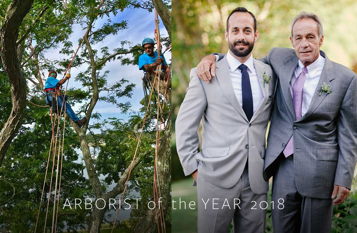 Leslie Lewis Arborist of the Year 2018