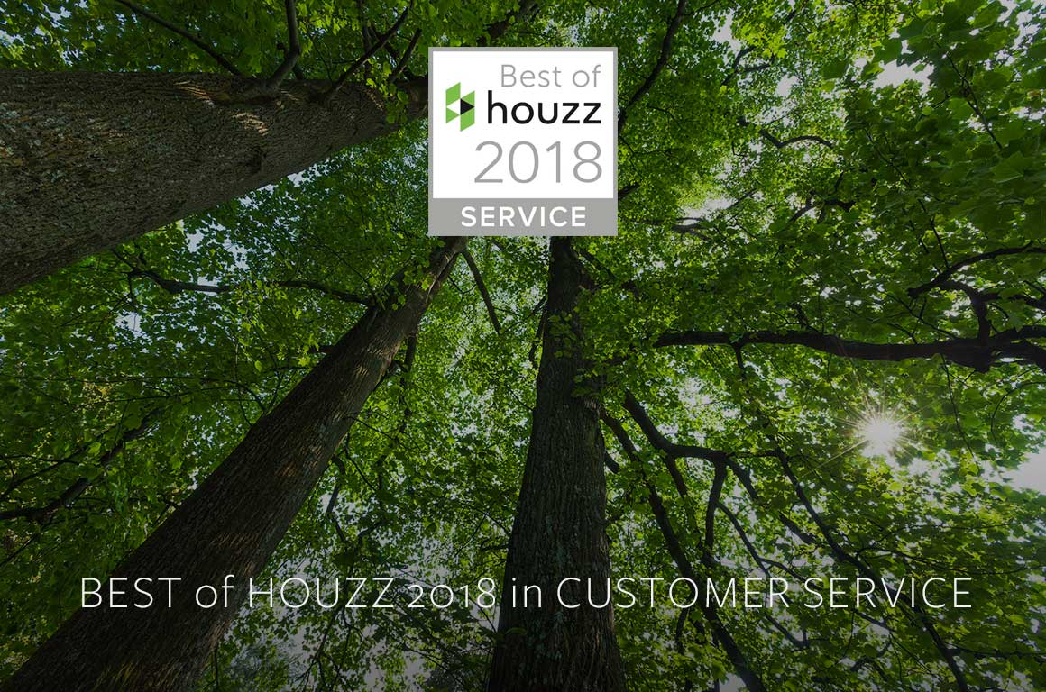 les arbres best of houzz 2018
